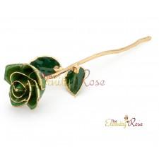 dark green rose