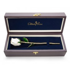 White Tight Bud Glazed Rose Trimmed with 24K Gold 11""