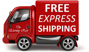 Image result for free express shipping