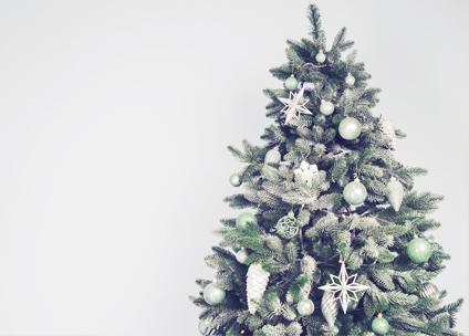 christmas fact christmas trees